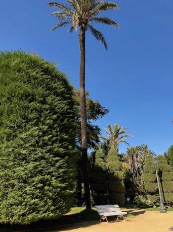 Casa Isa Elena - Cadiz Botanical Gardens